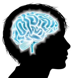 https://education.cu-portland.edu/blog/curriculum-teaching-strategies/brain-friendly-classroom/