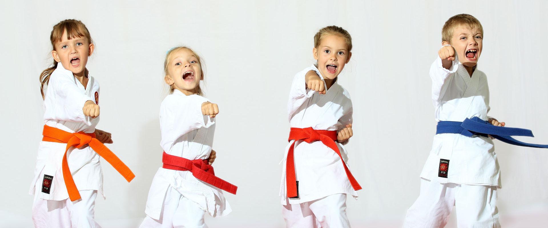 Fonte: http://www.spaziosolosalute.it/corso-taekwondo-per-bambini-milano.html